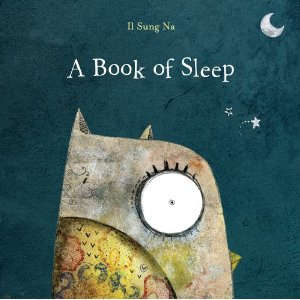 book-of-sleep_il_sung_na